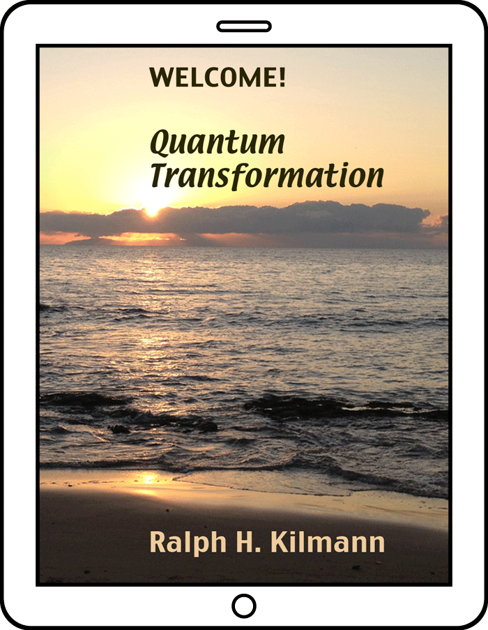 Quantum Transformation for Organizations