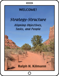 Aligning Strategy-Structure